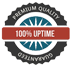 Online Central UPS 100% Uptime Electricity